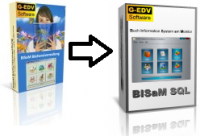 Umwandlung BISaM 2.9 in BISaM SQL